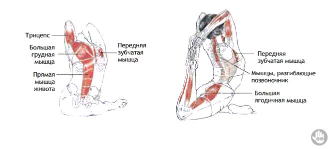 Eka Pada Rajakapotasana. There are numerous advantages to practicing Pigeon Pose.   Physical benefits:  - Opens the hip joint  - Lengthens the hip flexor  - Stretches the thighs, gluteals and piriformis muscles  - Extends the groin and psoas  Collateral benefits:  -  Helps with urinary disorder  -  Stimulates the internal organs  - Increases hip flexibility  - Improves posture, alignment, and overall suppleness  - Lessens or alleviates sciatic pain  - Diminishes lower back pain and stiffness Emotional benefits:  It is a primal reaction to store stress, trauma, fear and anxiety in the hips.  These bottled up feelings create tight hips.   -  Pigeon Pose opens the hips and releases negative feelings and undesirable energy stored in your system.